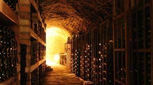 vini importanti
